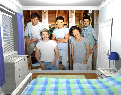 1Wall One Direction Barn Wall Mural