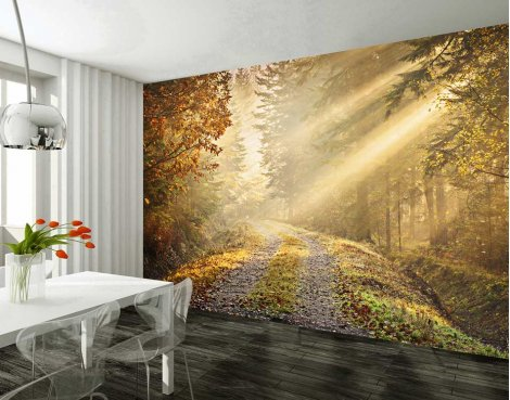 1Wall Autumn Forest Wall Mural