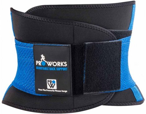 Proworks Back Support Belt - Medium