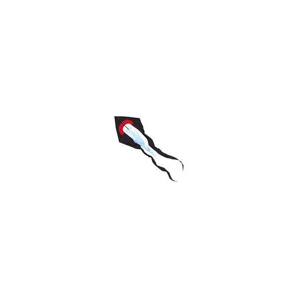 Delta Flowtail - Black Kite with 2m wingspan