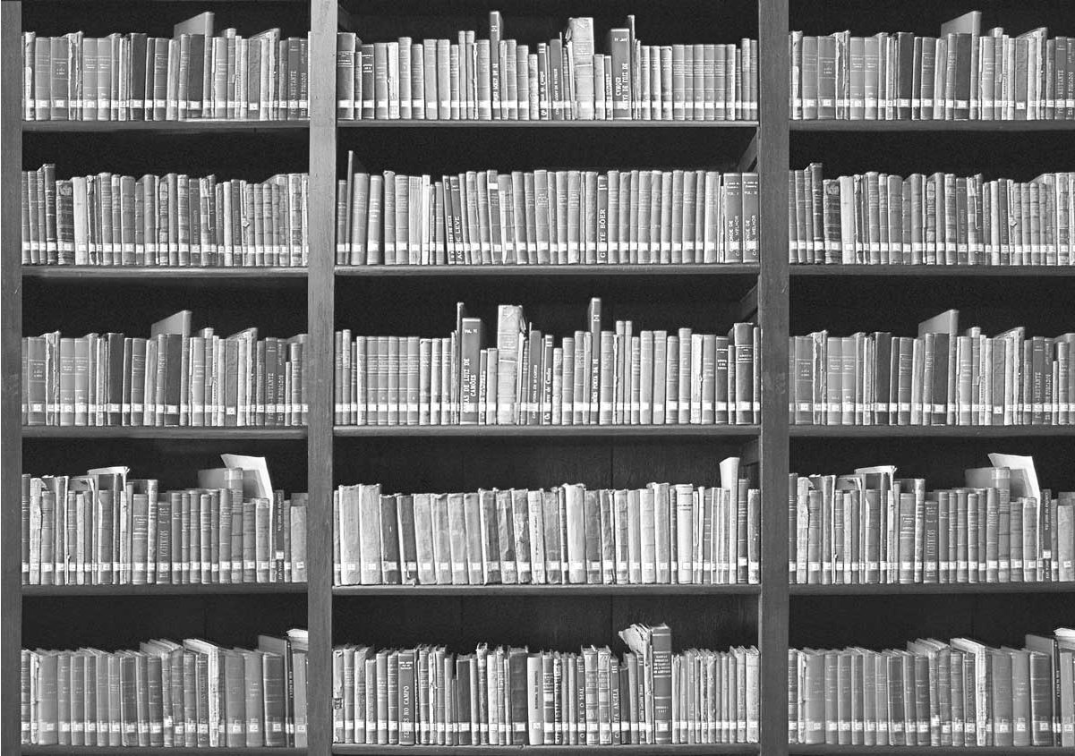 1Wall Giant Monochrome Bookshelf Wall Mural Alternative Image